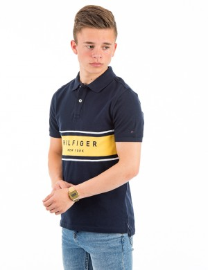 PLACED STRIPE RIB POLO