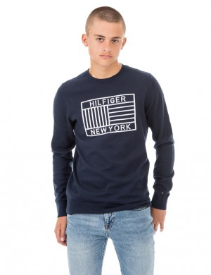 AME FLAG CN SWEATER